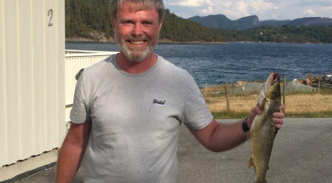 Fiske Sjøørret i Ryfylke