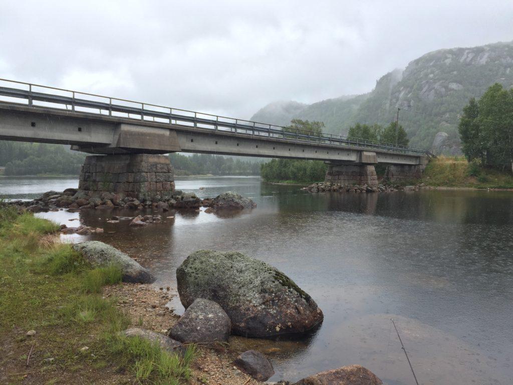 ノルウェーの釣りマス