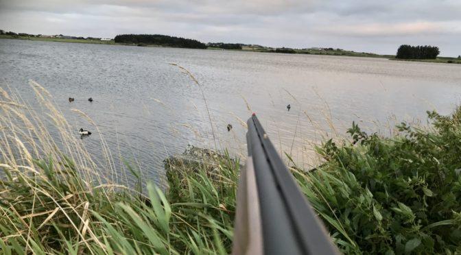 Harand- og Sakkand jakt på Horpestad